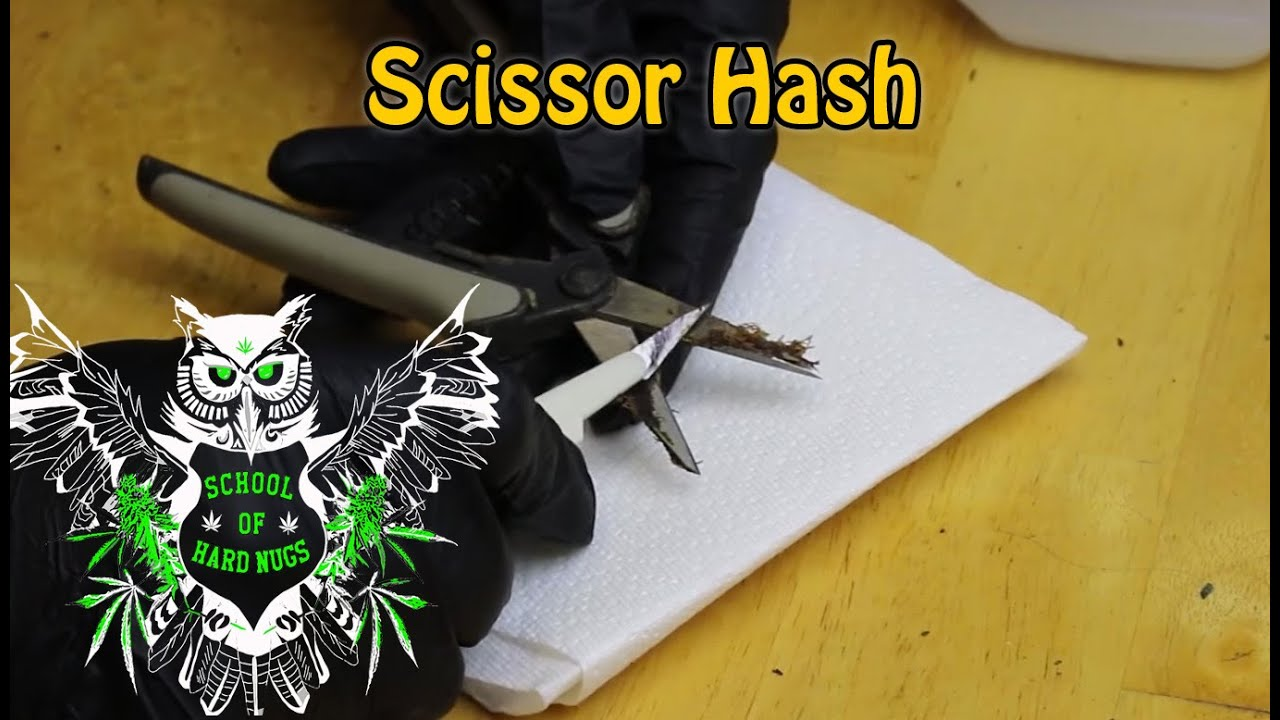 Scissor Hash | How to Clean your Trimming Scissors and Make Scissor Hash |  What is Scissor Hash