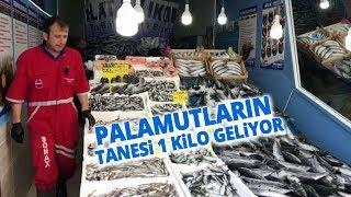 Tezgâhlarda Balık Bolluğu