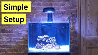 How To Set Up A Saltwater Aquarium For Beginners