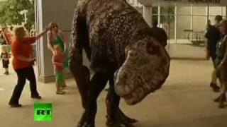 Динозавры в Австралии(http://twitter.com/serjesid http://vkontakte.ru/rookieizada Открытие Музея Естественных Наук в Австралии стало настоящим событием..., 2012-01-30T20:07:53.000Z)