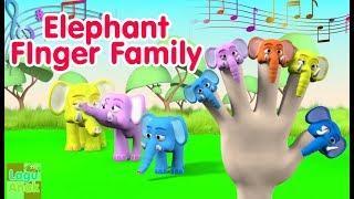 FINGER FAMILY - ELEPHANT FAMILY 3D  (Gajah) | Nursery Rhyme | Lagu Anak