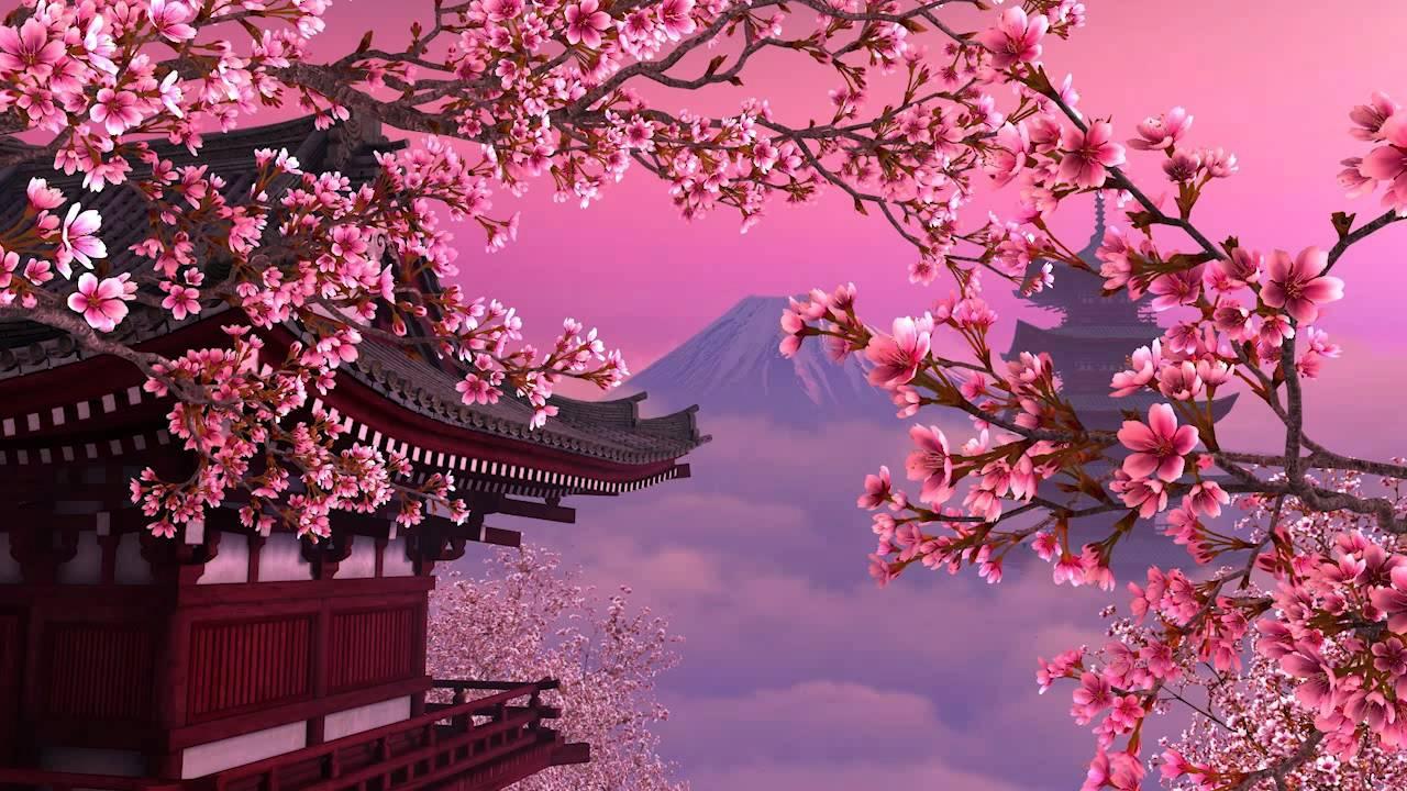 Falling Water House Wallpaper Blooming Sakura 3d Screensaver Youtube