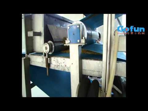 Fruit juice production line, juice machine - Shanghai Gofun Machinery