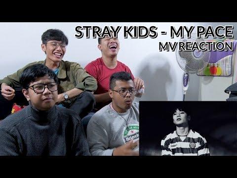 """MUDA MUDI SIAP DUKUNG ASIAN GAMES 2018"" | STRAY KIDS - MY PACE MV REACTION"