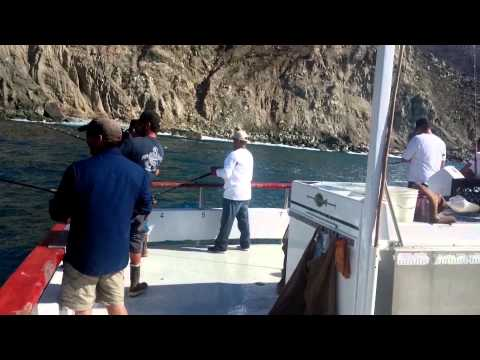 Freestyle fishing 22nd street landing pursuit youtube for 22nd street landing fish count