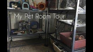 My Pet Room Tour; Ferrets, Hedgehog, Axolotl, Fish Tank