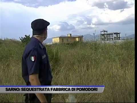 SCARICHI NEL FIUME SARNO: SIGILLI AD UNA FABBRICA DI POMODORI - SERVIZIO TG DEL 01/09/2017