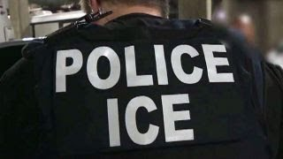 ICE (Immigration and Customs Enforcement) Agent