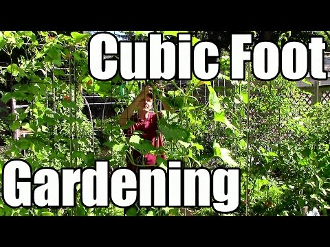 Cubic Foot Gardening: Increase Yields by Growing Vertically