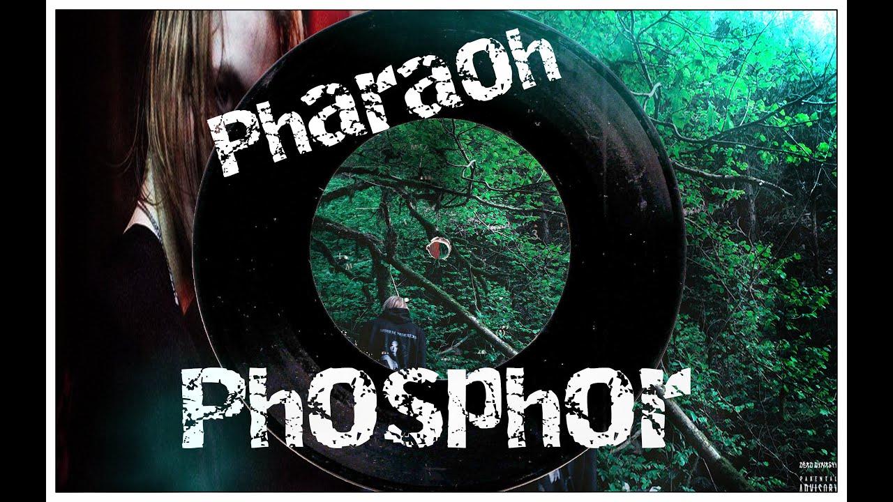 tekst-pesni-pharaoh-pornozvezda