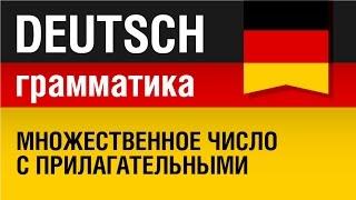 Множественное число с прилагательными. Plural Adjektive. Немецкий язык - урок 15/31. Елена Шипилова.