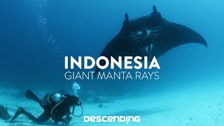 Video DESCENDING 4K | S1 E12 | The Giant Manta Rays download MP3, 3GP, MP4, WEBM, AVI, FLV Oktober 2018