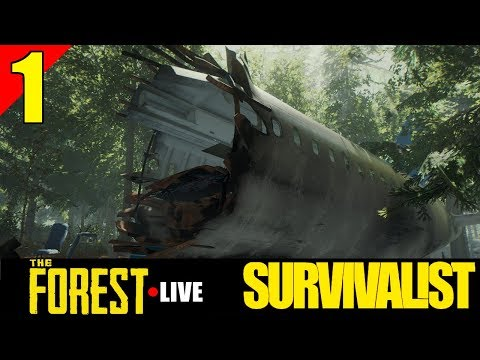 The Beginning - The Forest - Yolo Live Stream - Episode 1