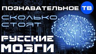 """Сколько стоят """"русские мозги""""? (Познавательное ТВ, Андрей Помялов)"""