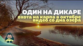 Один на дикаре Ловля карпа на озере