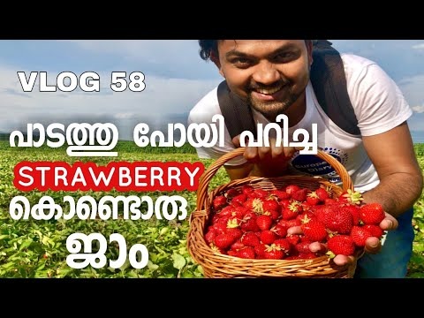 AUSTRIAN FARM IN A VILLAGE & COOKING STRAWBERRY JAM  -Austria Europe Malayalam Food And Travel Vlog