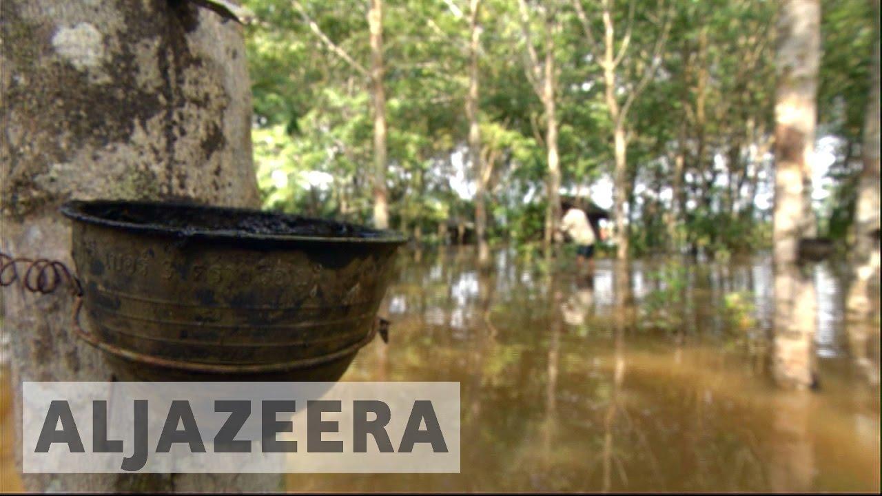 Devastating floods hit hard Thailand's rubber industry