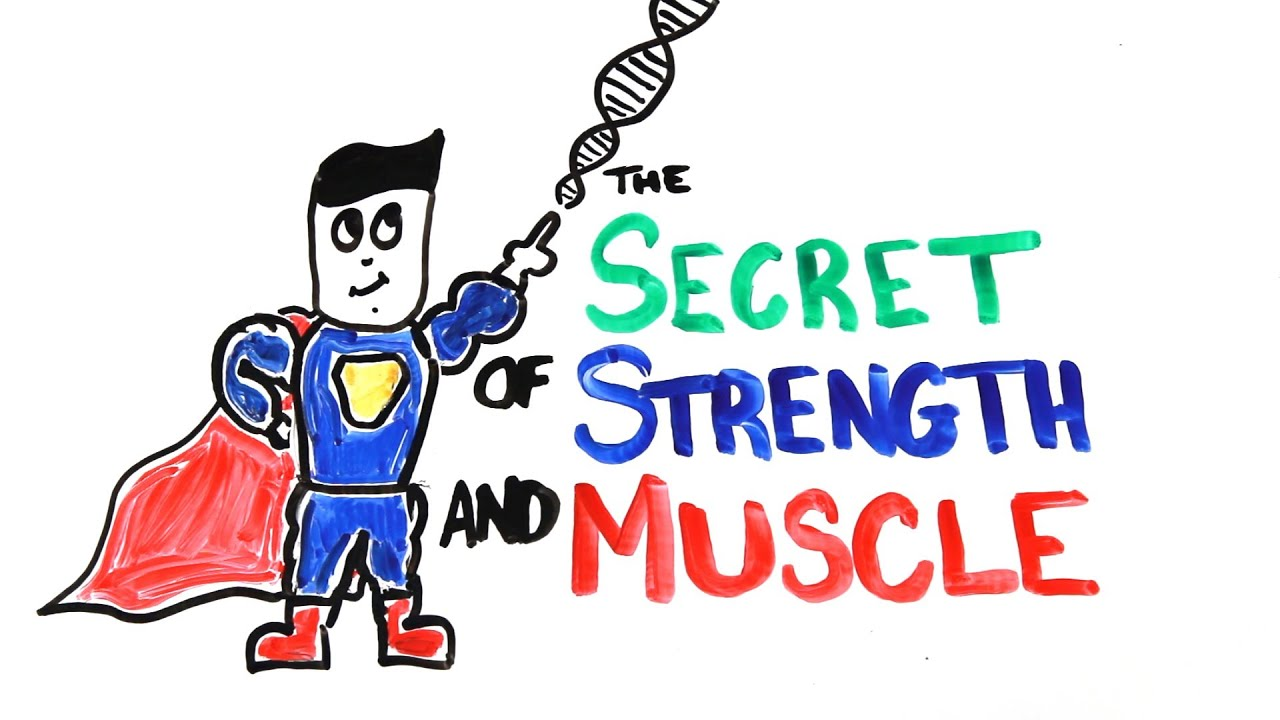 The Scientific Secret Of Strength And Muscle Growth Youtube