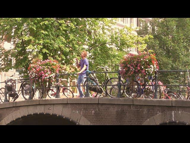 Granzzla - Amsterdam