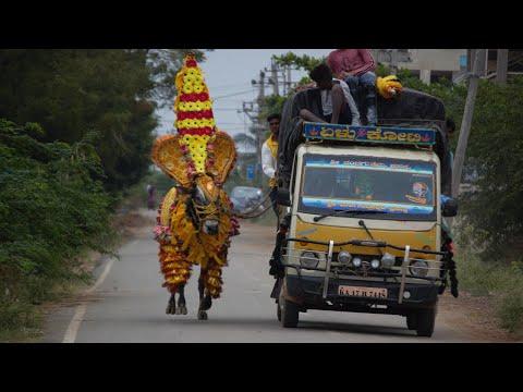 RNR Huli Running Exercise scenes, Hori habba Jallikattu, Devva Mariyappa