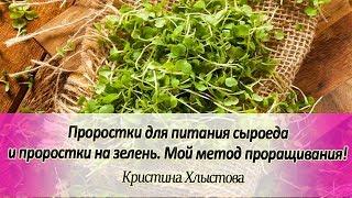 🔆 Проростки для питания сыроеда и проростки на зелень. Мой метод проращивания! | Кристина Хлыстова
