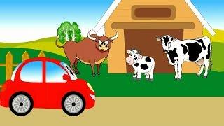 Машинка Бодя на ферме. Изучаем домашних животных. Мультики про машинки