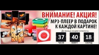 Модульные картины со скидкой 47% + MP3 плеер в подарок!(, 2016-10-21T14:13:25.000Z)