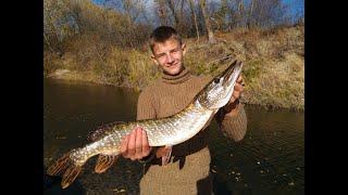Трофейная щука на спиннинг. Река Иловля. И трудовая рыбалка на озере Щенячье.