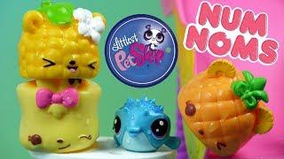 Littlest Pet Shop • Wakacje na Basenie • Num Noms • Bajki dla dzieci
