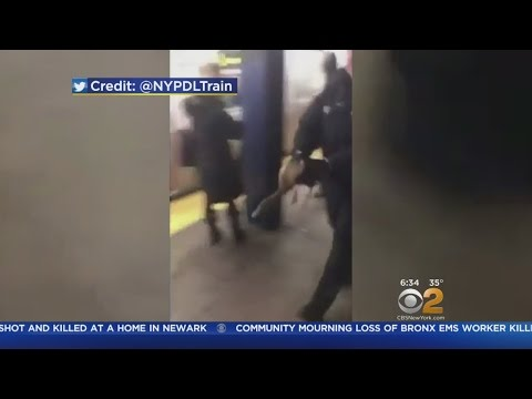 Transit Police Find Duck In Brooklyn Subway Station