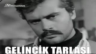 Gelincik Tarlası (1968) Tamer Yiğit, Sema Özcan