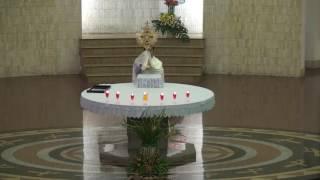 5. Chầu Thánh Thể