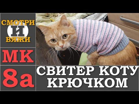 Одежда для кошек своими руками вязать крючком