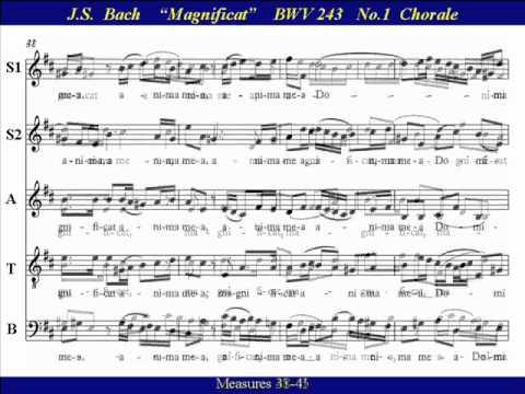 BACH BWV 243 EBOOK DOWNLOAD