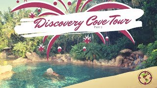 Discovery Cove Cove Part Two