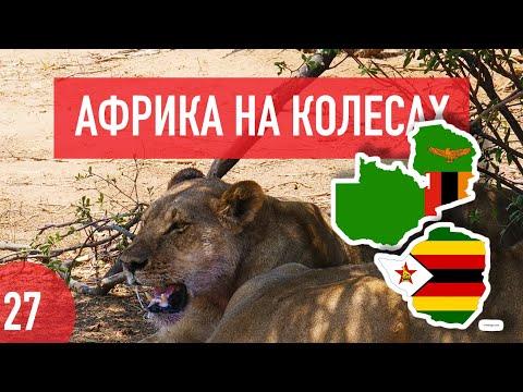 Зимбабве и Замбия. Миллиардеры, львы, водопад Виктория и ведра манго за $0.8. Африка на колесах #27