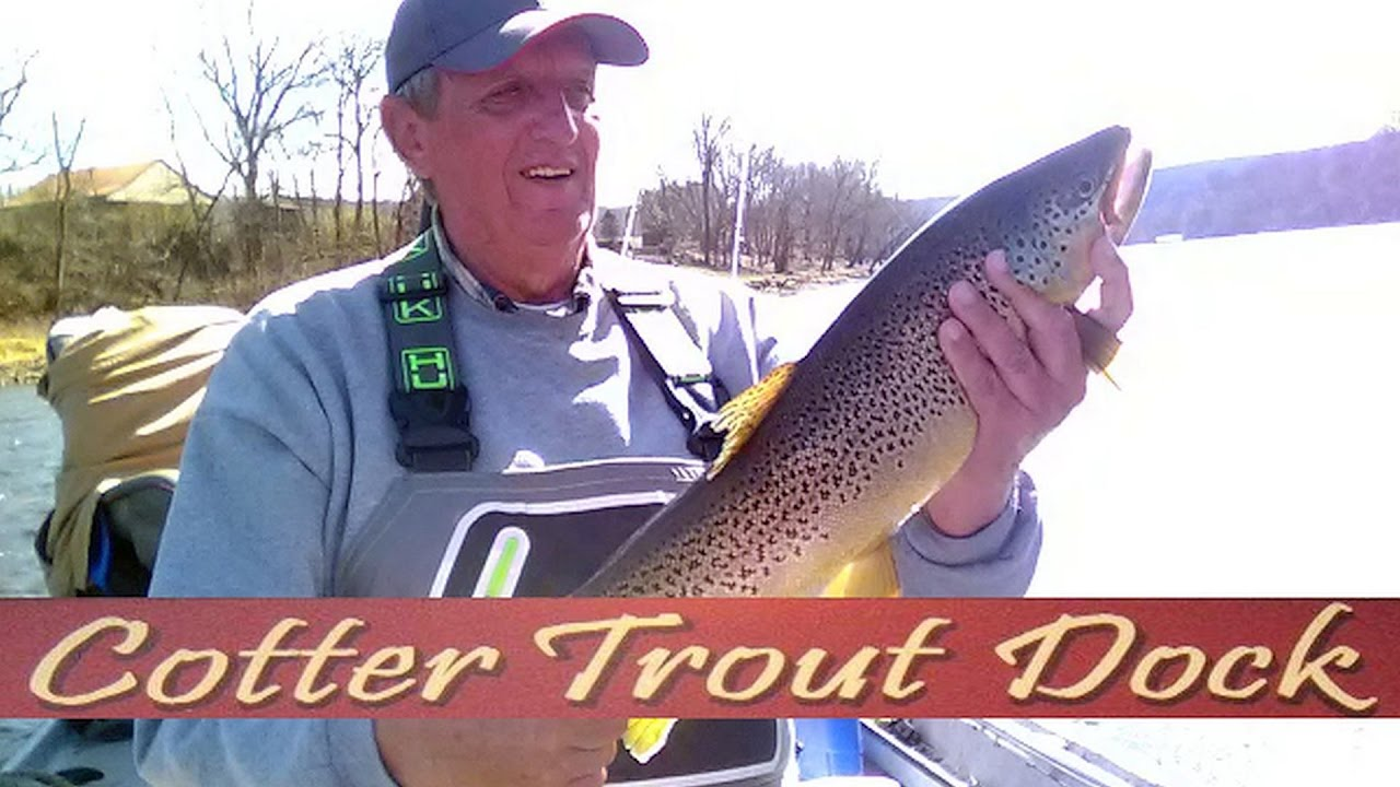 Arkansas white river trout fishing report march 1 2017 for White river arkansas fishing report