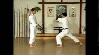 Taikyoku nidan & Kihon ippon kumite