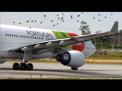 A330|A321|A320|A319|B738|F100|EMB145|F2TH PlaneSpotting PORTO airport (OPO) Portugal