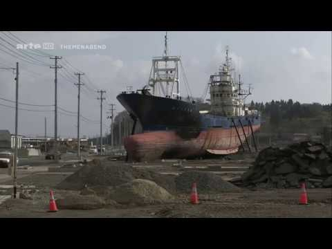 Nuklearkatastrophe Fukushima