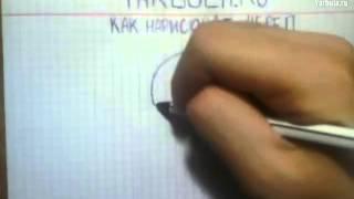 Как нарисовать череп(Учимся рисовать Если видео было полезно - поставь лайк! рисование, графика, живопись, как рисовать, как..., 2014-08-08T08:41:44.000Z)