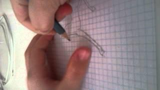 Как рисовать пегаса и единорога+пегасоединарога.(, 2014-03-31T08:41:40.000Z)
