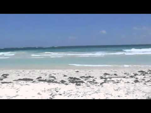 Land for sale at Tulum Beach in Mexico