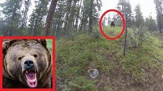Медведь гризли хотел атаковать велосипедиста