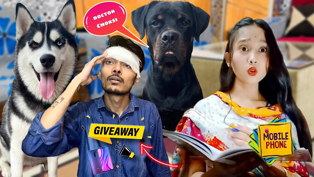 """My Dog's Help Me To Get Back My Memory 🧠 """"GIVEAWAY 😍""""  Dog can talk part 124 