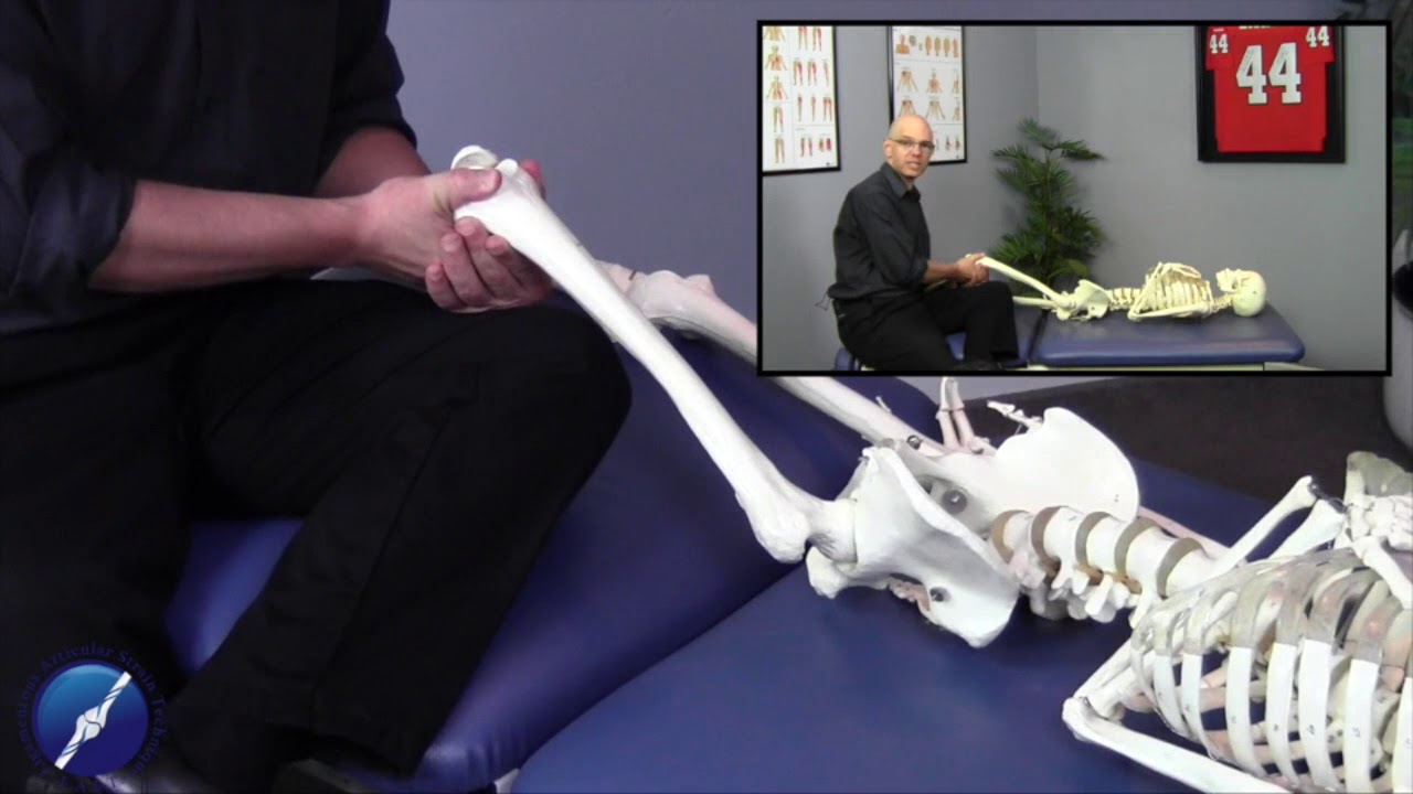 Ischiofemoral Ligament Youtube