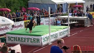 2018 Buhl, Germany High Jump Meet (Men) - Bühl Hochsprungmeeting