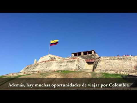 Internship in Latin America - Daniel's Testimonial