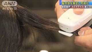 世界初!髪内部を測定 美容業界でカスタマイズ進む(19/07/30)