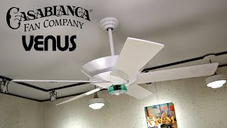 Casablanca Venus Ceiling Fan | White Blade Remake